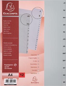 Exacompta intercalaires mensuel pour ft A4, en PP, 12 onglets, janvier-décembre, gris